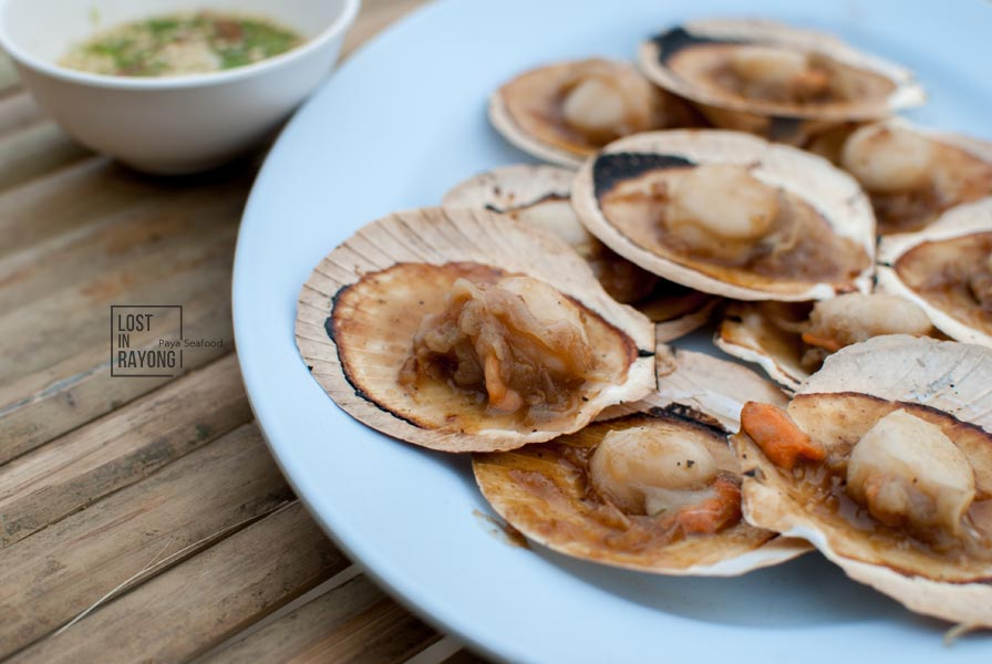 Grilled-shell-with-butter