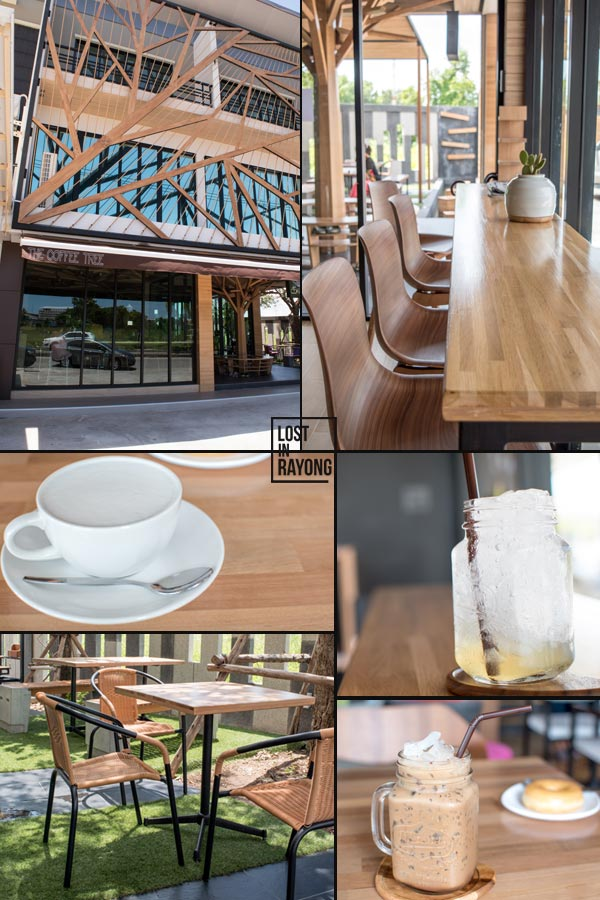 thecoffeetree1